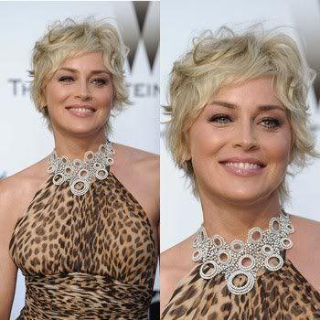Sharon Stone Sharon Stone Hairstyles Sharon Stone Short Hair Styles