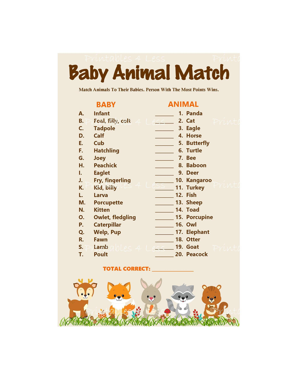 Woodland Baby Animal Match Baby Animals Name Game