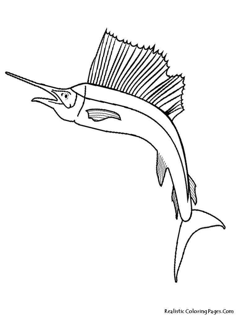 Tropical Fish Coloring Pages Fish Coloring Page Coloring Book Pages Coloring Pages