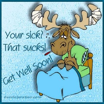 Get Well Moose Dj quote
