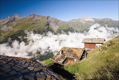 Swiss Alps /  David Rombaut