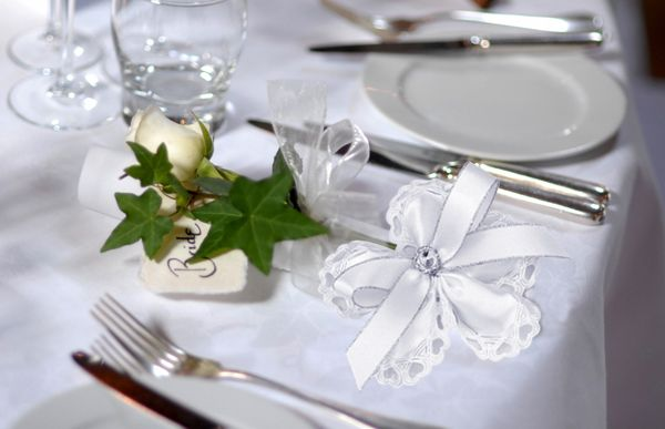 Wedding Favors Pleasing Jordan Almonds