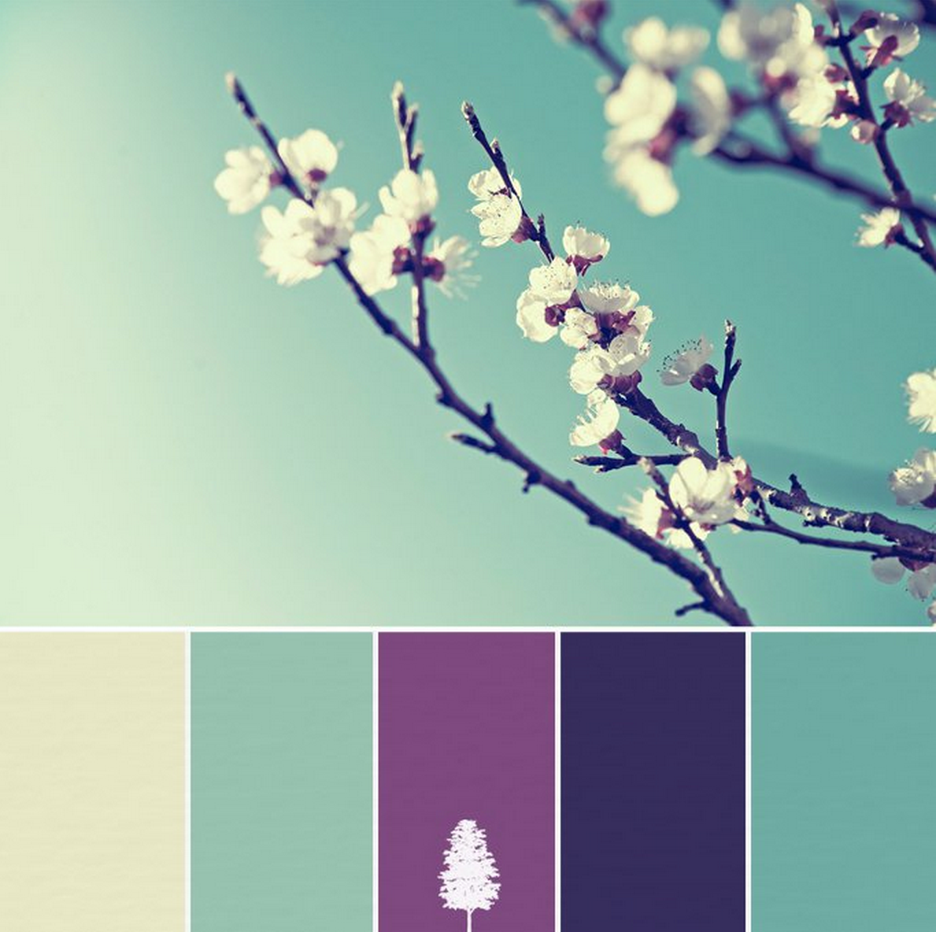 Color Palette - Purple & Teal to Pale dewy yellow & Midnight ...