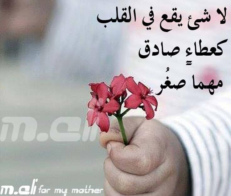 لا يصل الى القلب الا ما خرج من القلب Floral Floral Rings Flowers