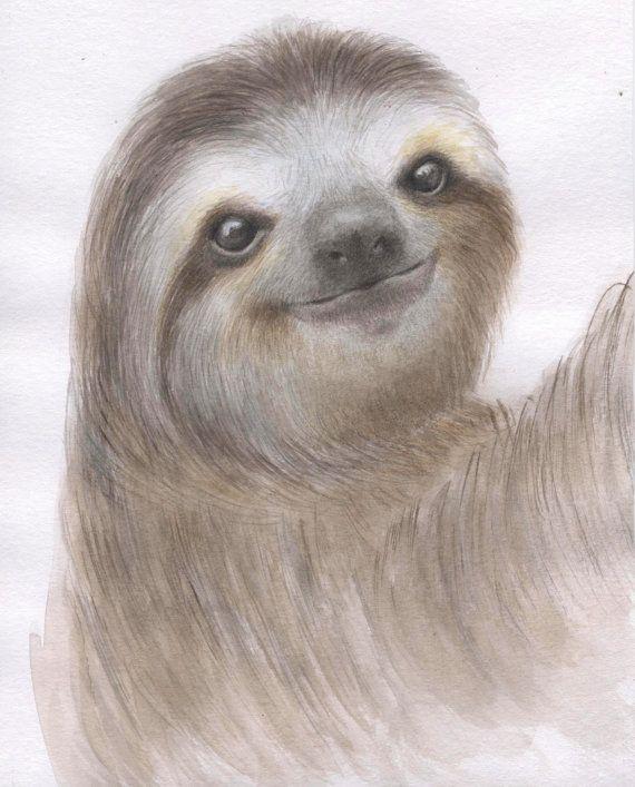 sloth painting sloth watercolor sloth illustration