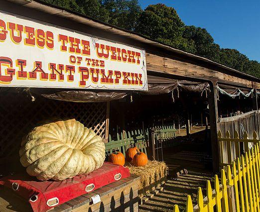 Old Bethpage Village Restoration Obvr Long Island Fair Fairs And Festivals