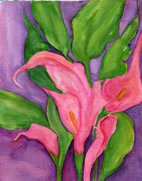 Pink Calla Lilies Watercolor Painting Original by SharonFosterArt, $25.00