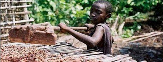 Bittere Bohnen: Wird Ihr Kaffee von Kindersklaven hergestellt?   - Coffee: Social Impact -