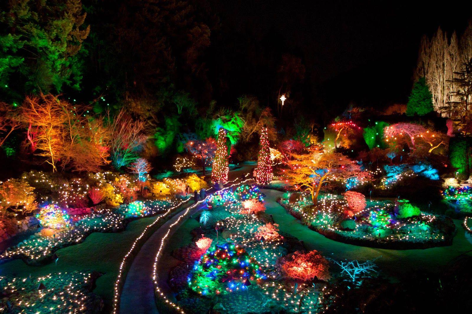 00620b98fd092cf01e4c1af0515e3c50 - The Butchart Gardens Christmas Lights Tour