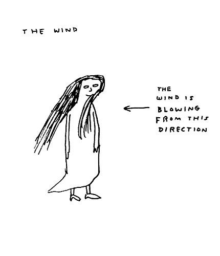 the wind  david shrigley
