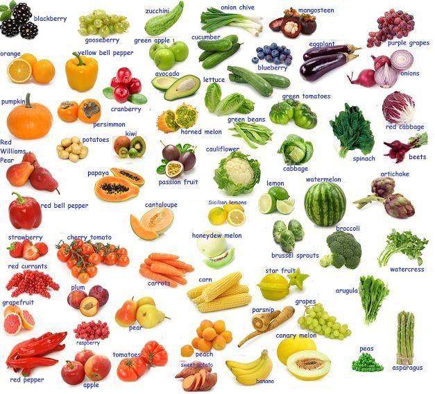 Lista De Vegetais Em Ingles Com Traducao Com Imagens Vegetal