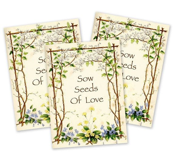 10 Forget Me Not Seed Packet Favours By Wedding In A: Seed Packet Favors, Set Of 25 (Bird & Butterfly Wildflower