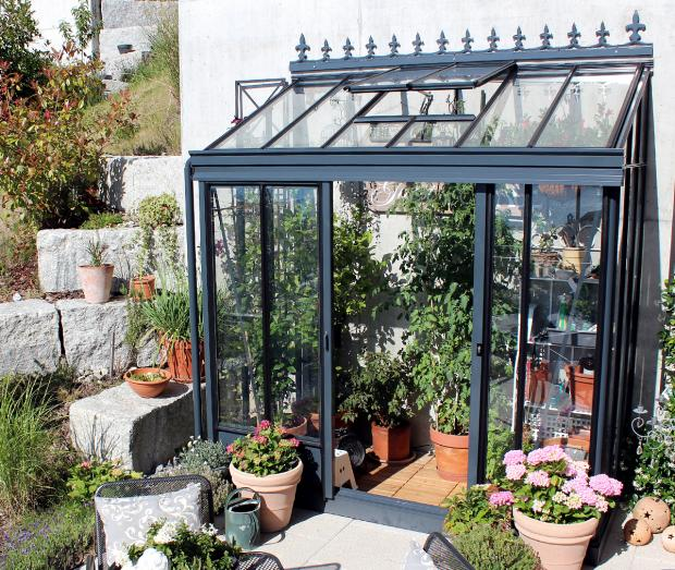 Photo of Gardening in a small space: greenhouses on palm trees – picture 2, #Anle … – animals