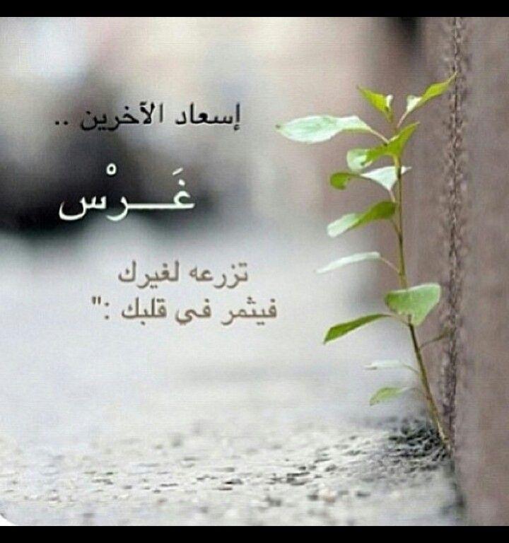 السعادة يمكن ان تثمر في قلبك Wise Words Quotes Arabic Love Quotes Words Quotes