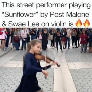 Via Me Me Post Malone Memes Violin