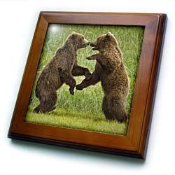 """Alaska, Katmai NP, Brown Bear, Hallo Bay - US02 PSO0887 - Paul Souders - 8x8 Framed Tile by 3dRose. $22.99. Inset high gloss 6"""" x 6"""" ceramic tile.. Dimensions: 8"""" H x 8"""" W x 1/2"""" D. Keyhole in the back of frame allows for easy hanging.. Cherry Finish. Solid wood frame. Alaska, Katmai NP, Brown Bear, Hallo Bay - US02 PSO0887 - Paul Souders Framed Tile is 8"""" x 8"""" with a 6"""" x 6"""" high gloss inset ceramic tile, surrounded by a solid wood frame with pre-drilled keyhole for..."""