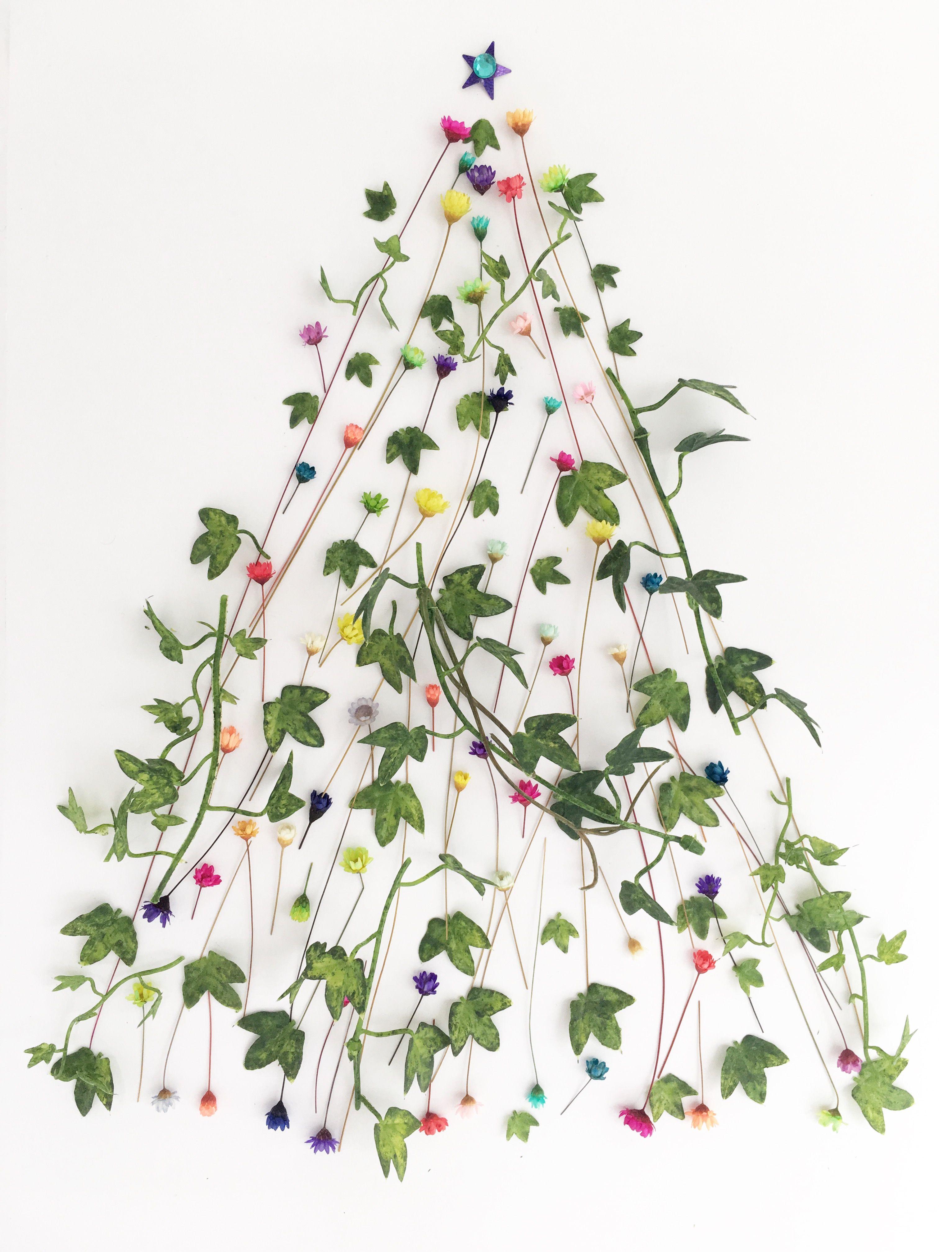 Merry Christmas Everlasting Flowers Chrysanthemum Flower Bloom