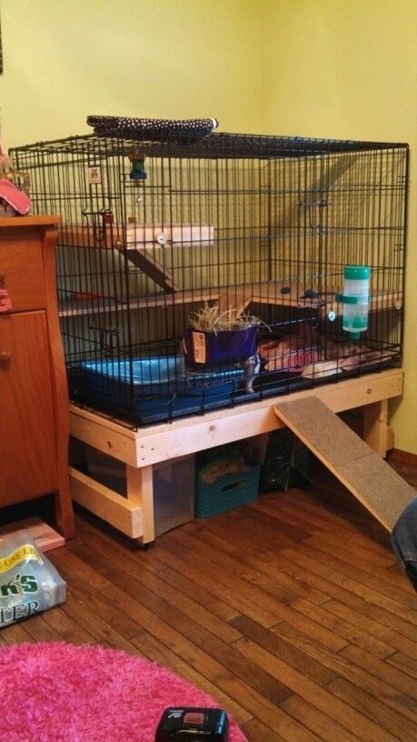 Bunny cage made from dog crate bunnies pinterest for How to build a guinea pig cage out of wood