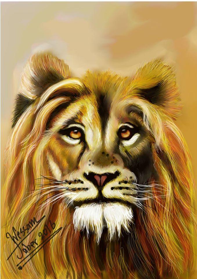 الأسد قوي و أقوى ما فيه قلبه طفرة جوز Lion Animals
