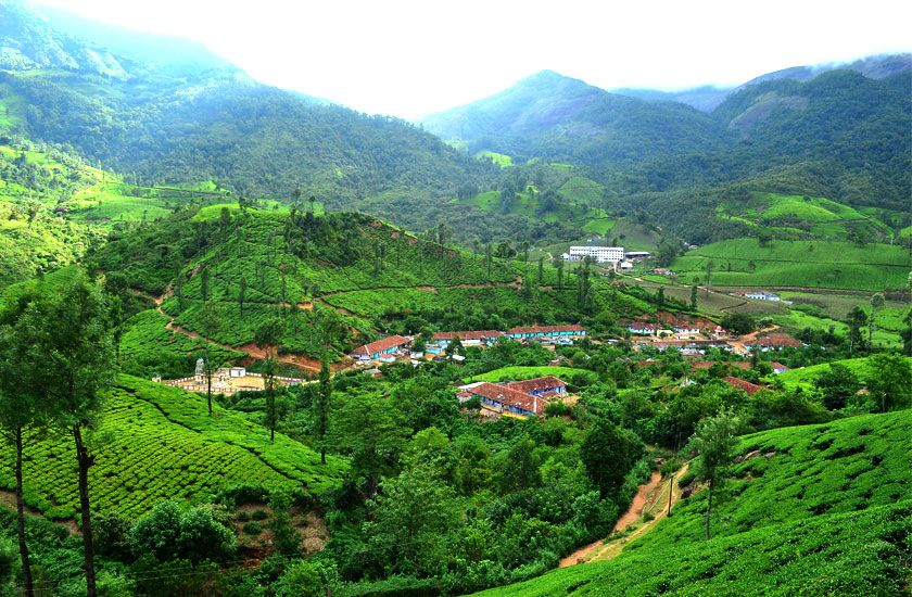 Map:>  https://www.google.com/maps/place/Munnar,+Kerala+685612/@11.2322608,74.6451484,5z/data=!4m5!3m4!1s0x3b0799794d099a6d:0x63250e5553c7e0c!8m2!3d10.0889333!4d77.0595248