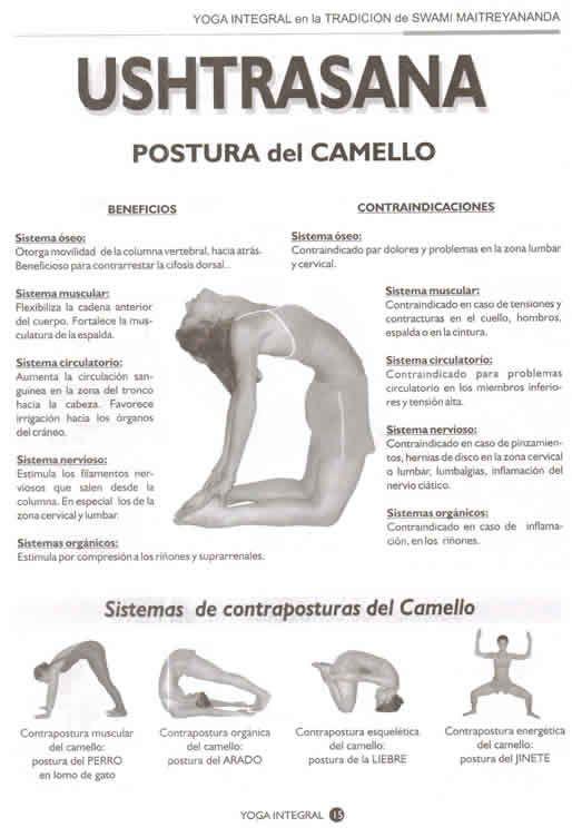 Revista 86 Yoga Revista Yoga Integral Yoga Integral Digital Yoga Argentina Posturas De Hatha Yoga Libros De Yoga Yoga