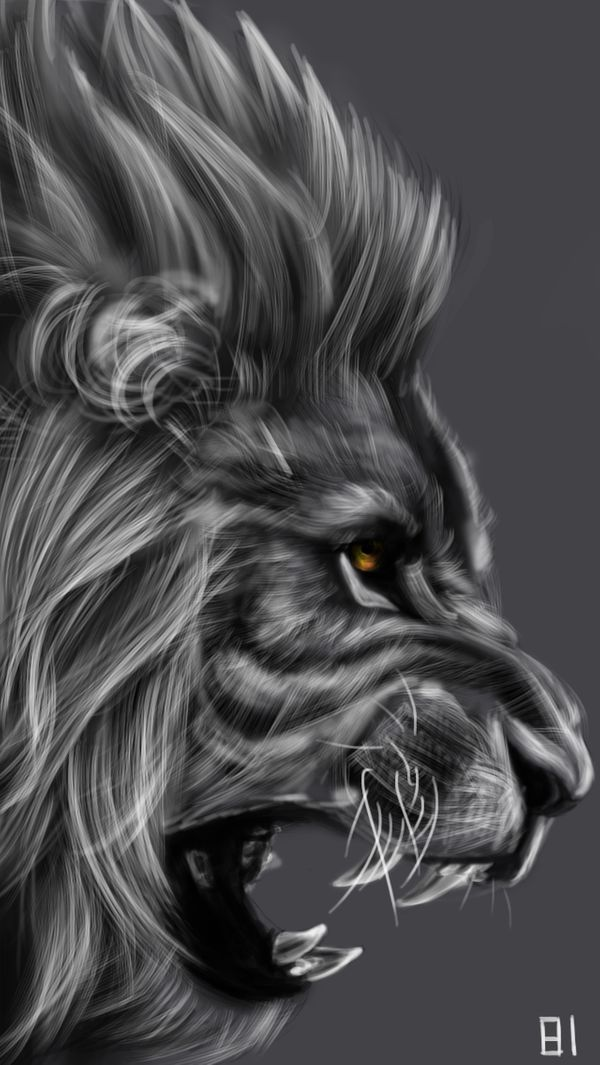 Lion by Paint3108 on DeviantArt