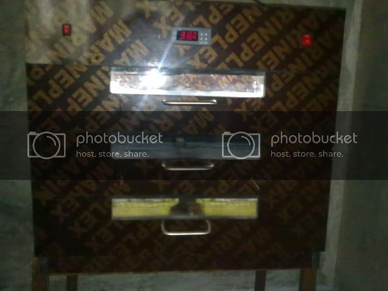 Home Made Incubator Page 34 In 2020 Homemade Incubator Homemade Cabinets Incubator