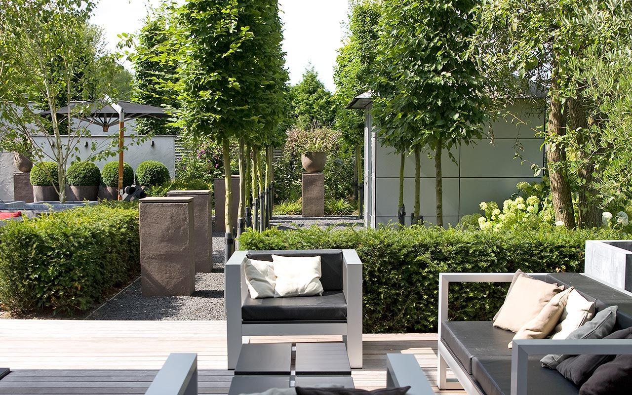 relax tuin met diverse lounge terrassen het wandelpad laantje met zuilvormige bomen rond de. Black Bedroom Furniture Sets. Home Design Ideas