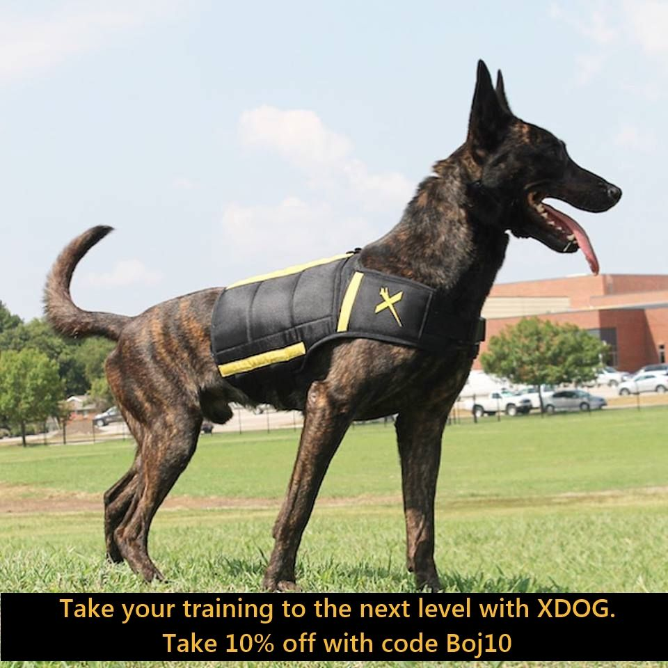 Introducing The Xdog Weight Fitness Vest For Dogs Of All Breeds
