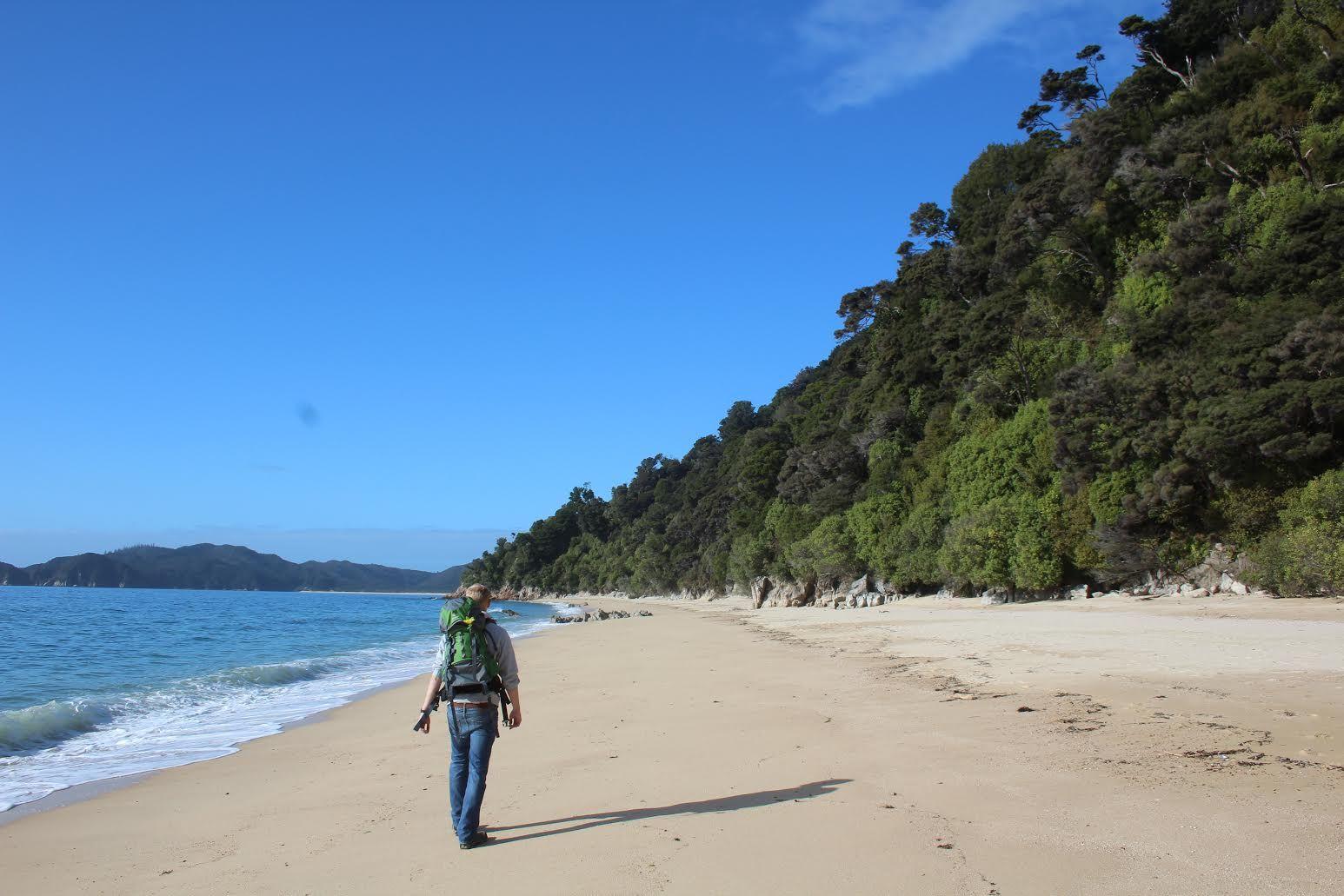 Kollege Johannes auf Entdeckungstour durch den Abel Tasman Nationalpark. #Neuseeland #Reiseentdecker #beach