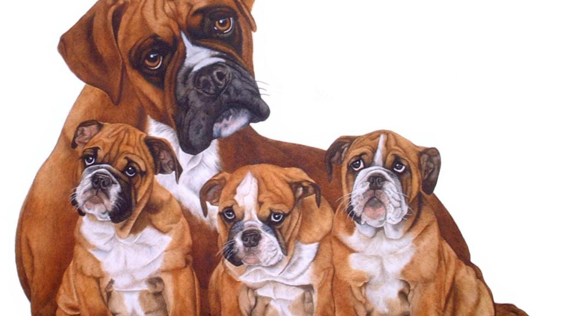 Pin By Deborah Babb On Dog Family Cross Paintings Dog Wallpaper Puppy Wallpaper