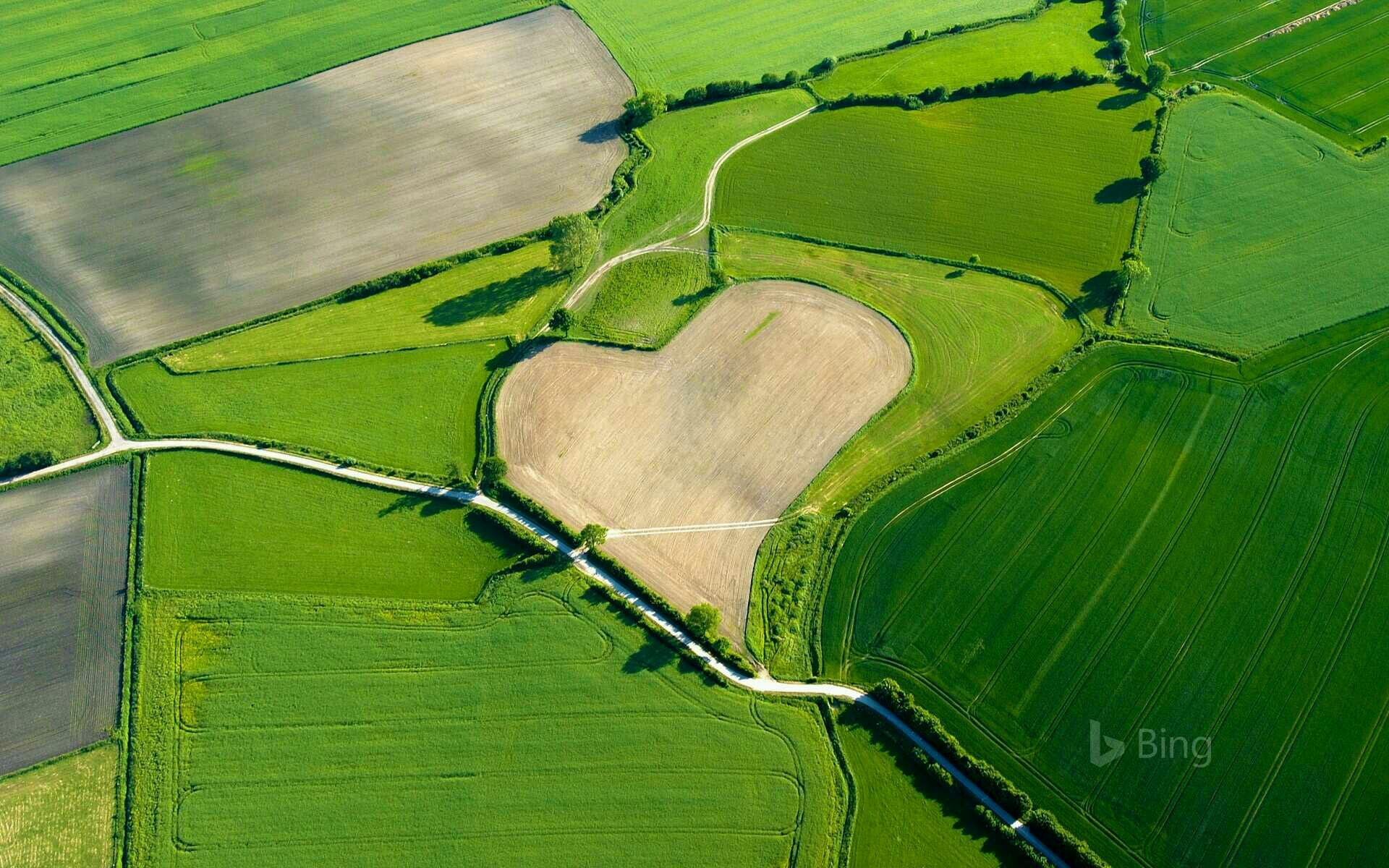 Image by Glen Black on Hearts Car insurance, Best cheap