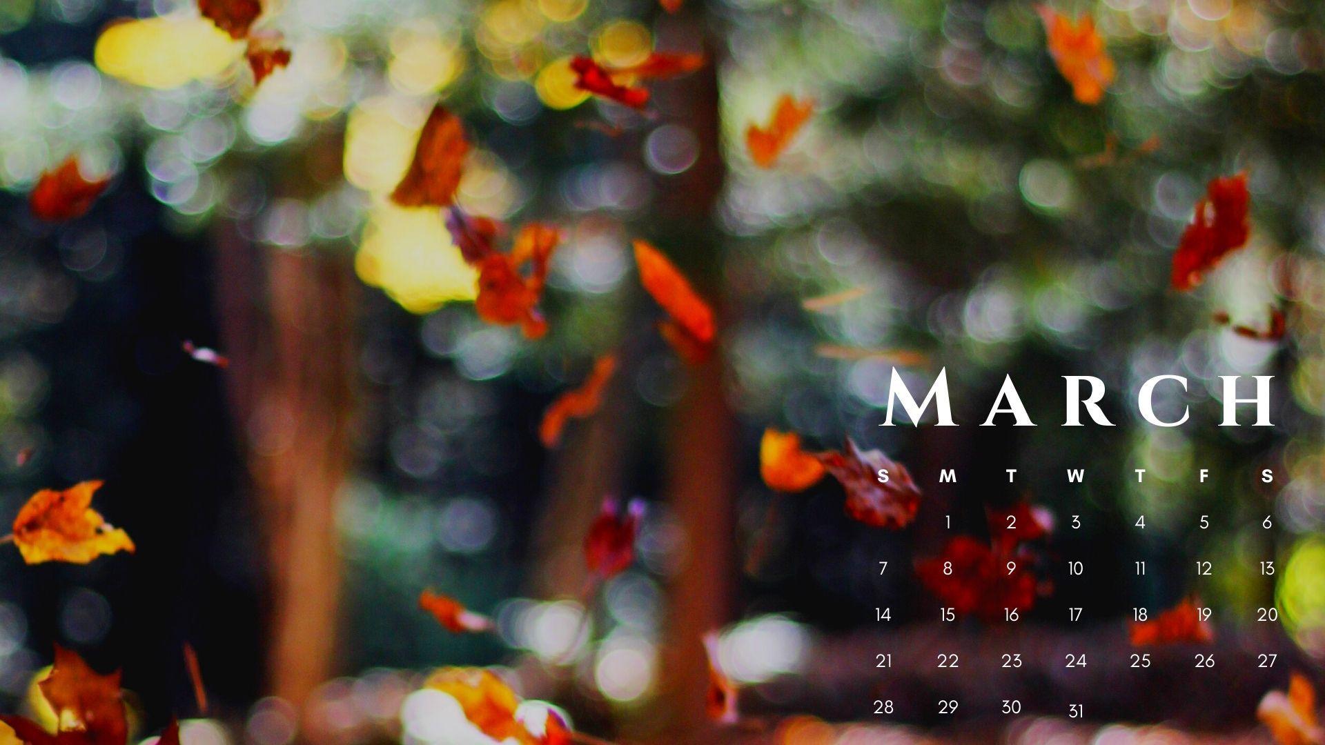 March 2021 Calendar Nature Hd Wallpaper In 2021 Calendar Wallpaper Desktop Calendar February Wallpaper Images wallpaper photo hd download 2021