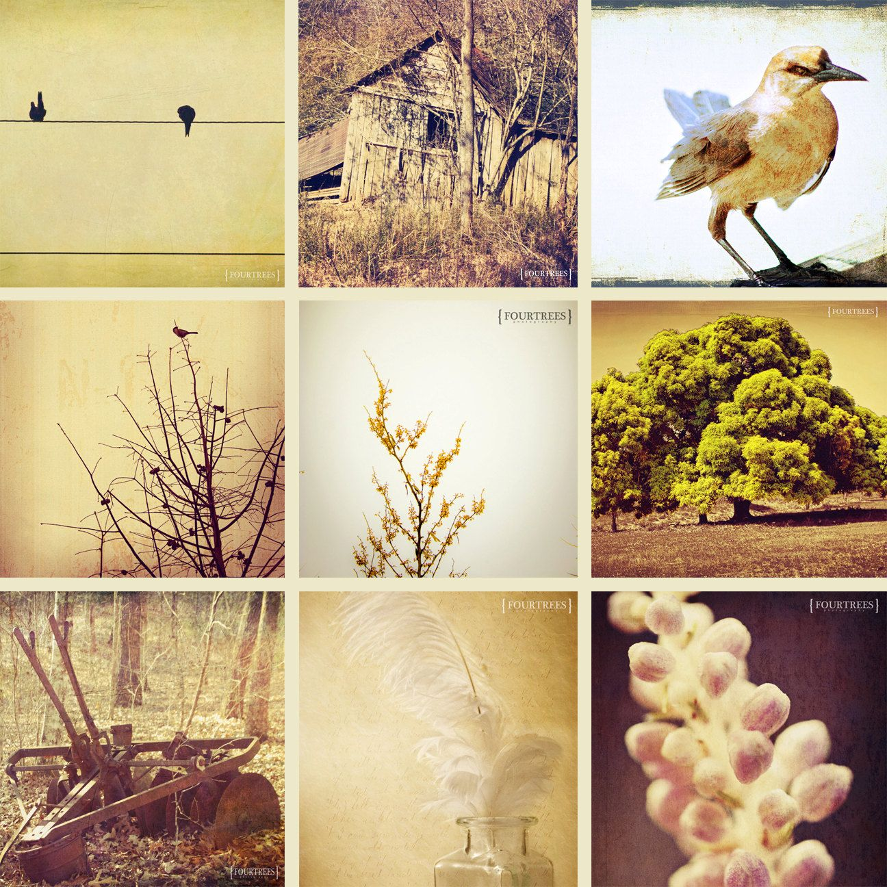 Earthy Neutrals - Set of 9 5x5 earth tone photography prints home ...