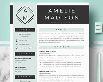 Professional Cv Template For Ms Word  Creative Resume Template