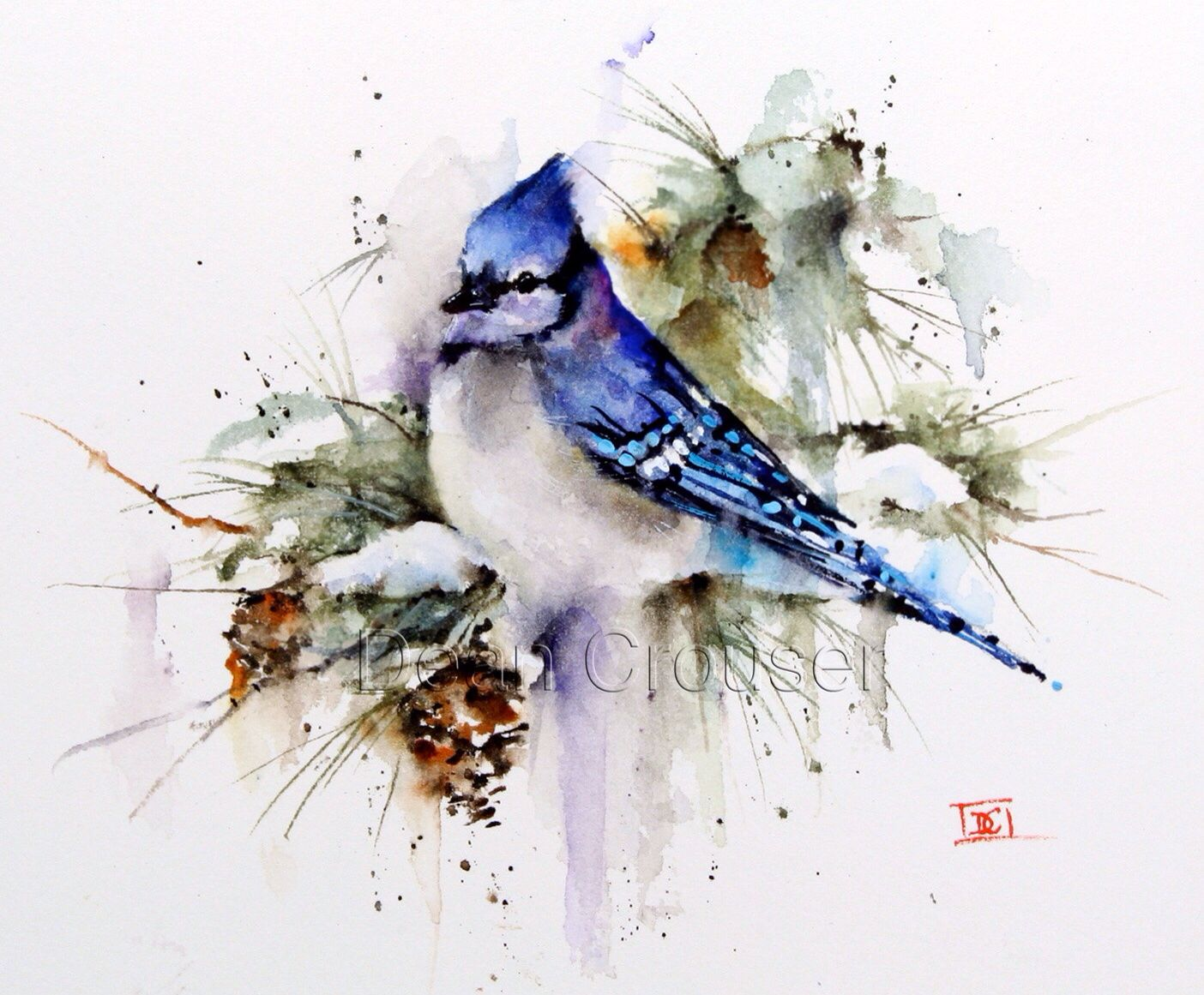 BLUE Jay Winter Watercolor Bird Art Print By Dean Crouser