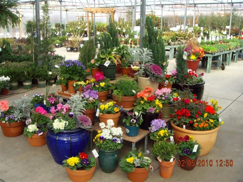 Custom Container Gardens From Small To