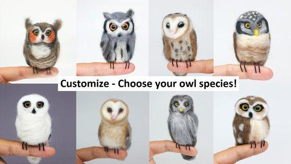 w hlen sie ihre eule dies ist eine liste f r eine benutzerdefinierte owl ihrer wahl die eule. Black Bedroom Furniture Sets. Home Design Ideas