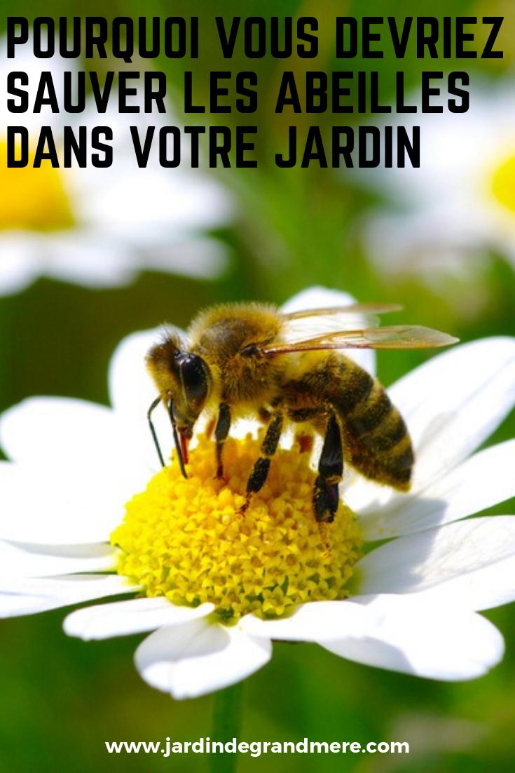 Pourquoi Vous Devriez Sauver Les Abeilles Dans Votre Jardin Sauvez Les Abeilles Animaux Jardinage Bio