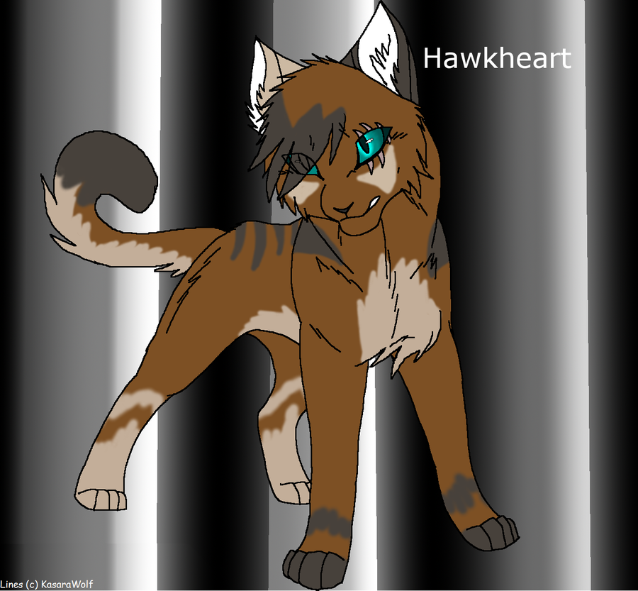 hawkheart google search Warrior cats, Character