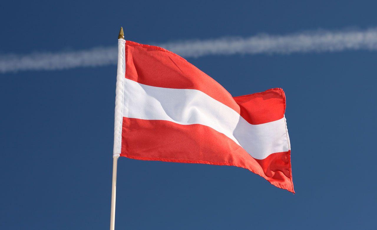 Картинки по запросу флаг австрии