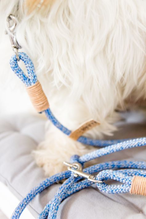 Photo of titatoni   Blog – DIY – Food – Lifestyle: DIY dog leash for happy dogs – Instructions for a double adjustable leash made of rope with a touch of Northern German and fine leather!
