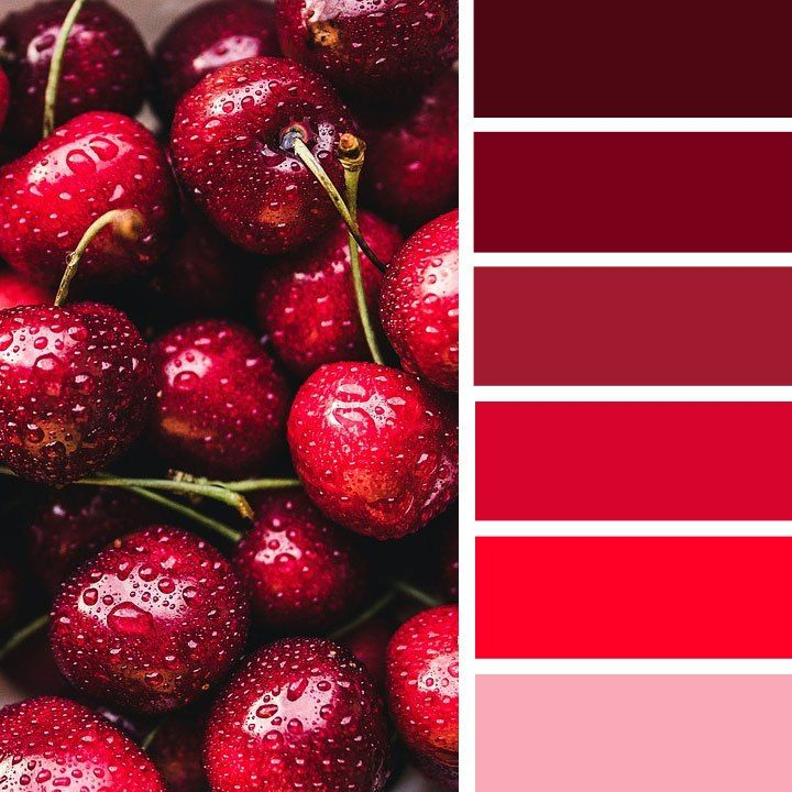 red color scheme,red cherry ,winter color inspiration,autumn color