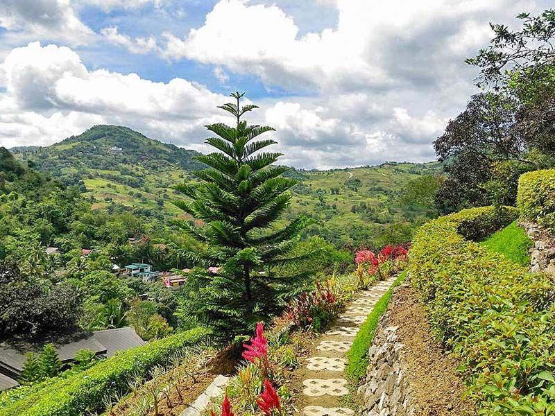 Terrazas De Flores In Busay Cebu Cool Places To Visit Places To Visit Cebu