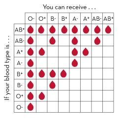 Blood Type: AB+ is the universal recipient O- is the ...
