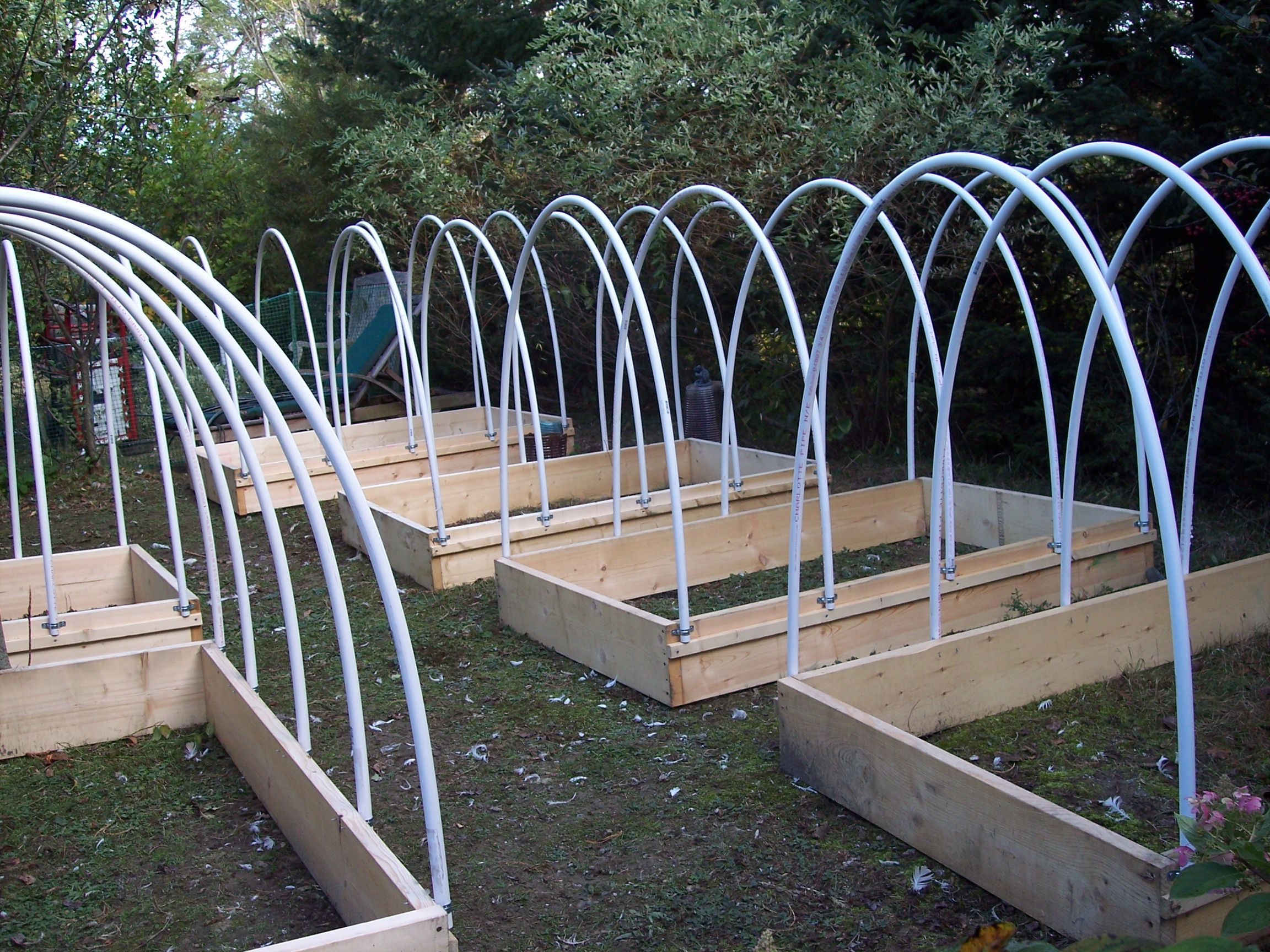 Pvc Pipe Garden Hoops Google Search Coops Quail Coop Electrical Conduit View Electric Wiring Pigeon
