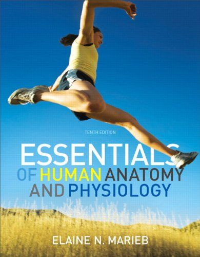 Bestseller Books Online Essentials of Human Anatomy and Physiology ...