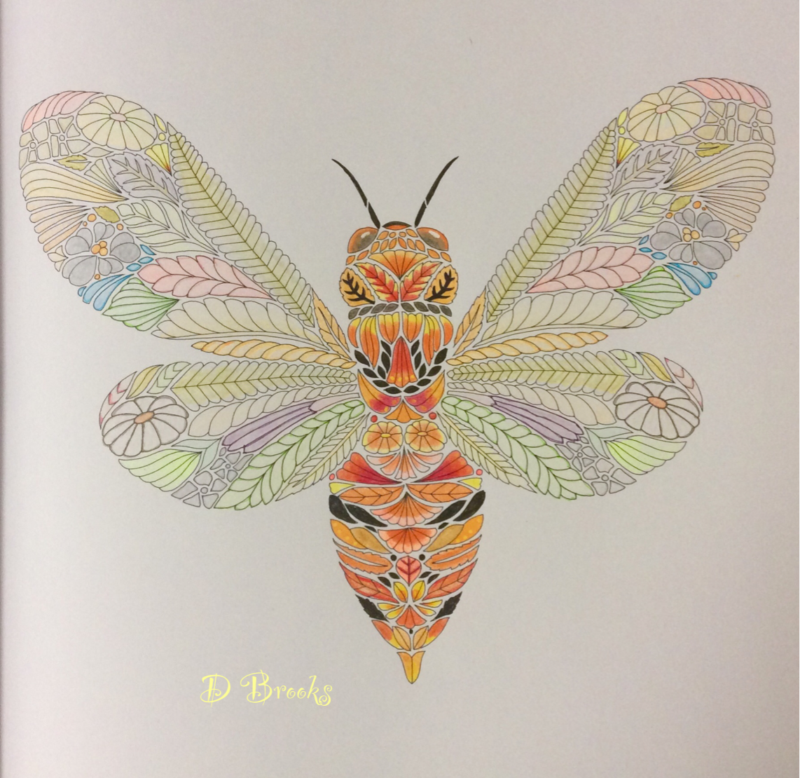 Cicada from Beautiful Birds and Treetop Treasures by ...
