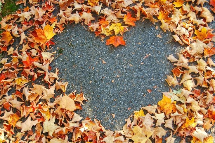 Autumn leaf heart #helloautumn