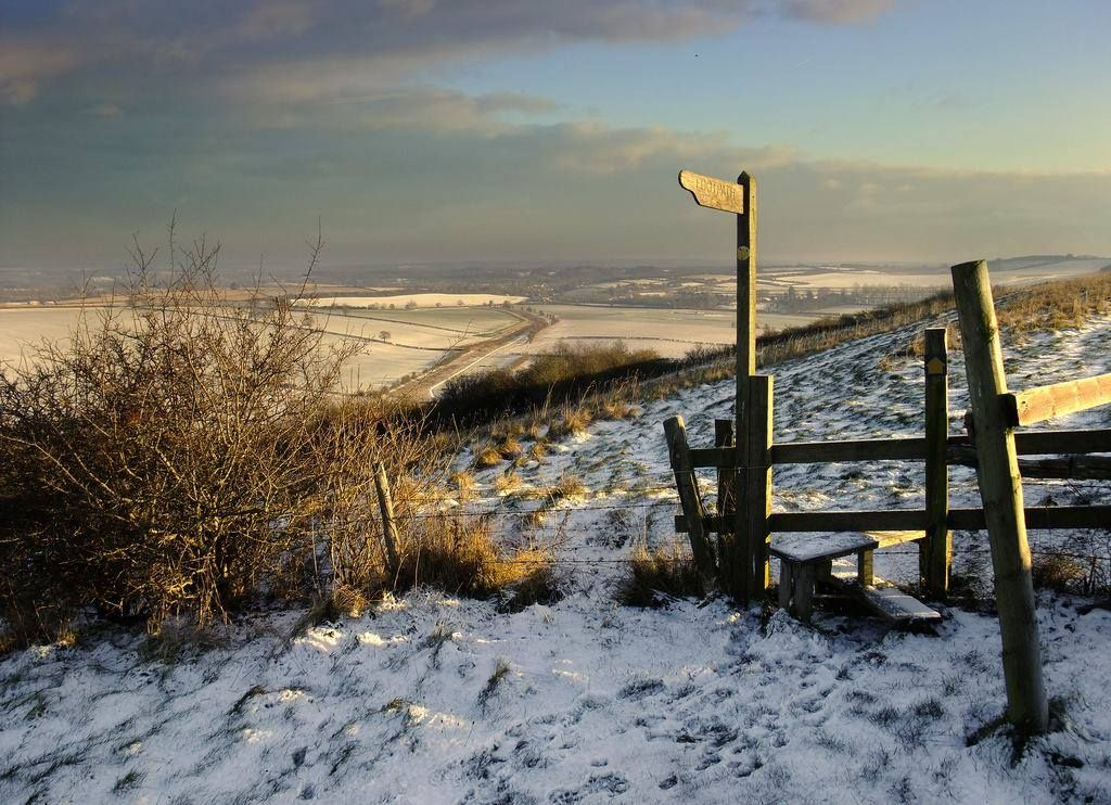 A winter walk in Hampshire, England.